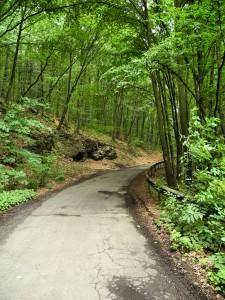 Дорога к Невицкому замку
